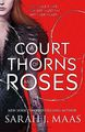 A Court of Thorns and Roses cover 2