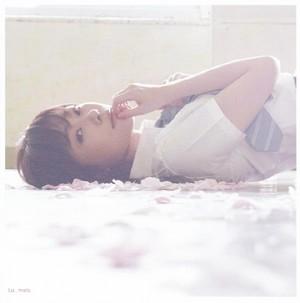 Akb48 Amore TRIP Sashihara Rino