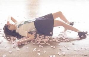AKB48 愛 TRIP Sashihara Rino