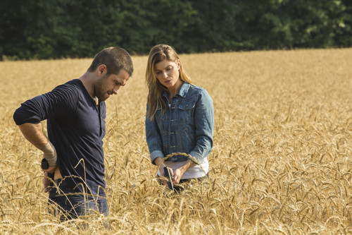 Antony Starr achtergrond with a grainfield entitled Antony Starr as Lucas kap in 'Banshee'