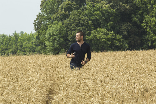 Antony Starr Обои with a grainfield entitled Antony Starr as Lucas капот, худ in 'Banshee'