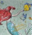 Ariel - ariel photo