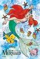 Ariel - the-little-mermaid photo