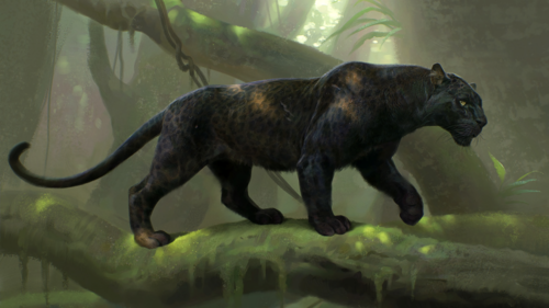 The Jungle Book wallpaper containing a panther called Bagheera