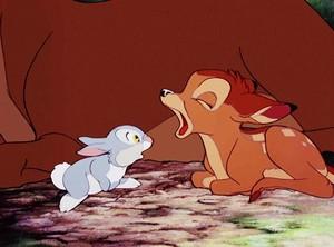 Bambi Yawning