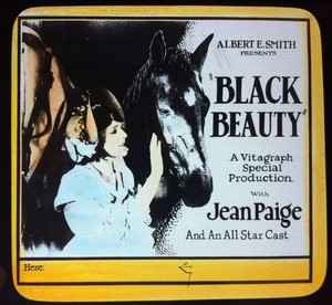 Black Beauty (1921) Poster