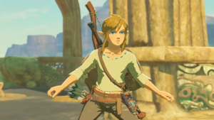 Breath of The Wild BoTW Link