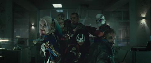 Captain Boomerang fondo de pantalla entitled Captain Boomerang in Suicide Squad