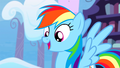 Dash - rainbow-dash photo