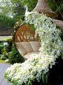 Dreamy Gardens - daydreaming photo