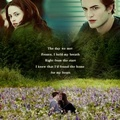 Edward and Bella ~ A Thousand Years ~ - twilight-series photo