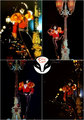 Eric Carr ~August 4, 1980 - kiss photo