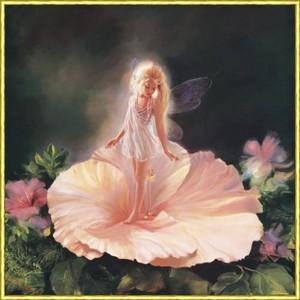 flor Fairy