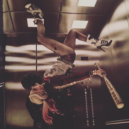 Suicide Squad 壁紙 titled Harley Quinn