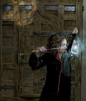 Hermione Sorcerer's Stone Book Illustration