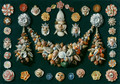 Jan van Kessel the Elder - Festoon, masks and rosettes made of shells (1656) - fine-art photo