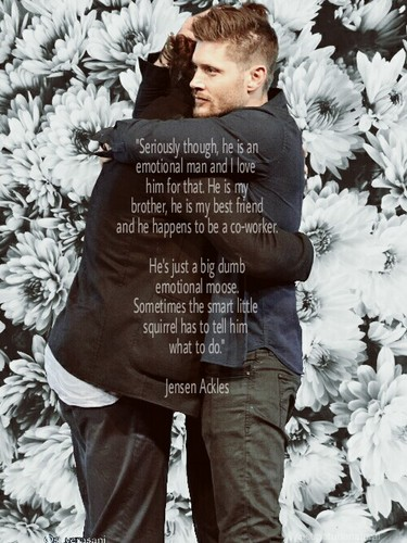 Jensen Ackles wallpaper probably with a snowbank and a sign entitled Jensen and Jared