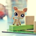 Littlest Pet Shop - littlest-pet-shop photo