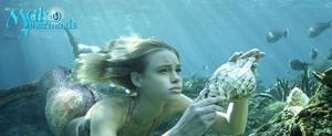 Lyla underwater