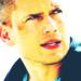 Michael Scofield - prison-break icon