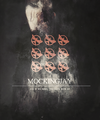Mockingjay - the-hunger-games fan art