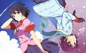 Monogatari Series: 秒 Season (Hitagi and Hanekawa)