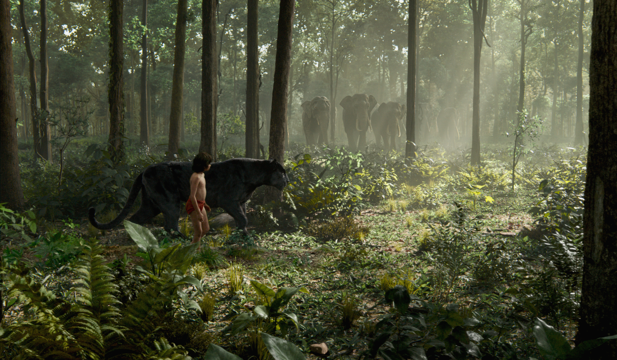 Mowgli and Bagheera see the Elephants