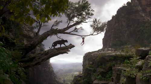 The Jungle Book wallpaper called Mowgli and Bagheera