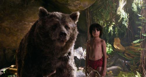 The Jungle Book wallpaper entitled Mowgli and Baloo