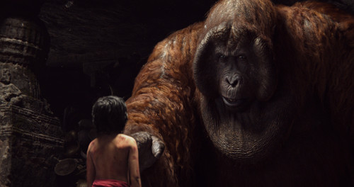 The Jungle Book wallpaper titled Mowgli and King Louie