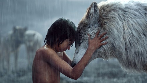The Jungle Book kertas dinding titled Mowgli and Raksha