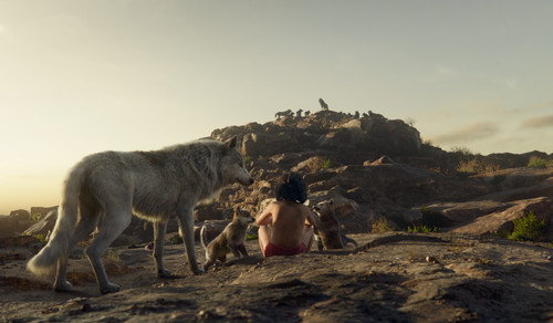 The Jungle Book Обои possibly with a mountain goat called Mowgli and the волк Pack