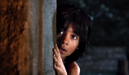 The Jungle Book Обои called Mowgli