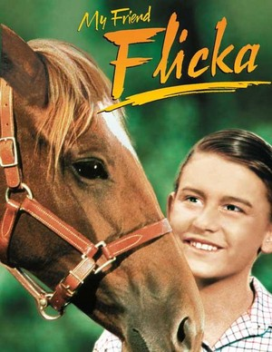 My Friend Flicka (1943) Poster