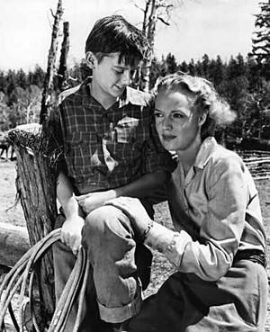 My Friend Flicka (1943) Still