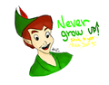 Never Grow Up! - peter-pan fan art