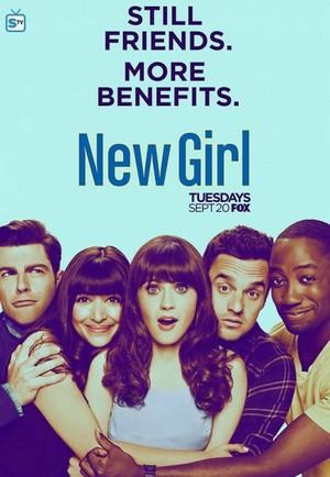 New Girl Season 6 Poster