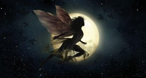 Night Fairy