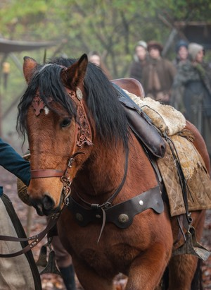 """Outlander """"The Gathering"""" (1x04) promotional picture"""