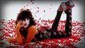 Paul 1980 - kiss wallpaper