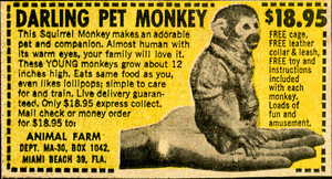 Pet Monkey ad in old comic book