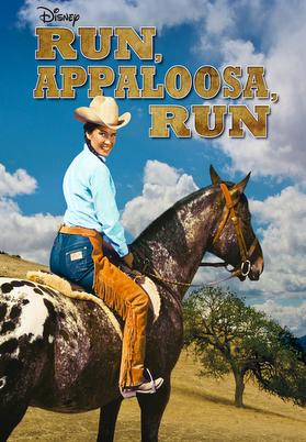 Run, Appaloosa, Run (1966) Poster
