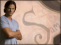 Sam ...and that look (1024x768) - sam-winchester wallpaper