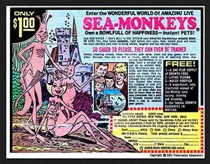 Sea-monkeys ad in old comic book