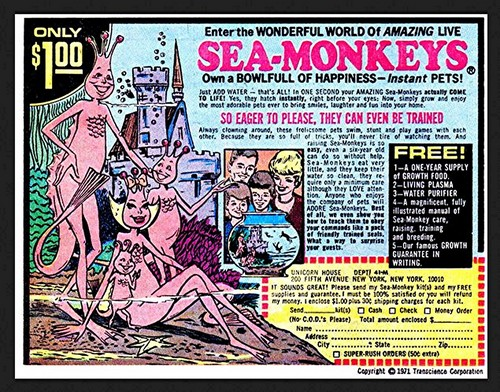 Childhood Memories wallpaper with anime entitled Sea-monkeys ad in old comic book