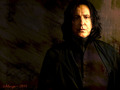 Severus Snape - severus-snape wallpaper