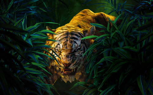 The Jungle Book Обои containing a tiger cub entitled Shere Khan