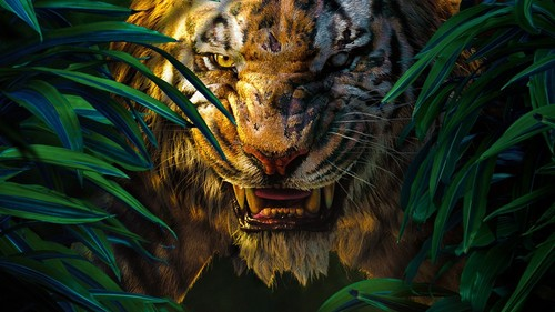 The Jungle Book wallpaper probably with a tiger cub called Shere Khan