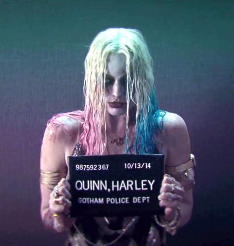 Harley Quinn wallpaper entitled Suicide Squad - Harley Quinn's Mugshot