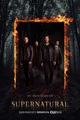 Supernatural season 12 - jared-padalecki photo